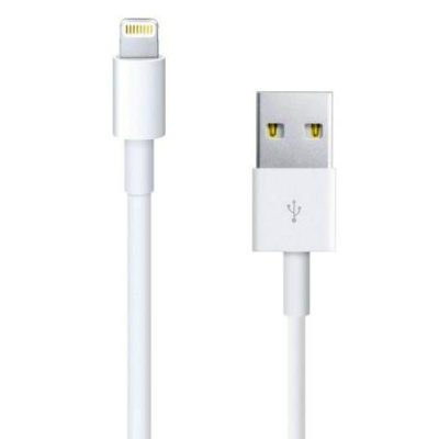 Câble original Lightning vers USB